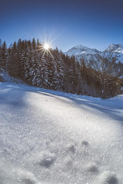 Saint Foy winter