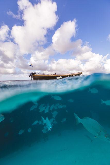 Klein Bonaire underwater