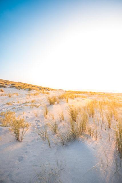 Veersedam dunes sunset