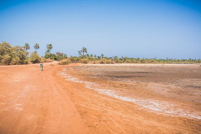 Gambia landscape