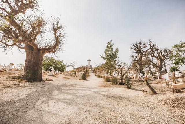 Senegal cementary