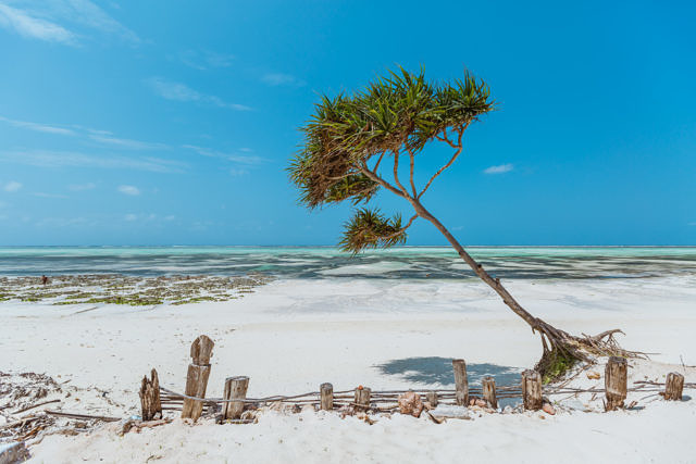 White beaches of Zanzibar