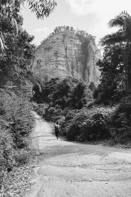 Kenya - Taita Hills